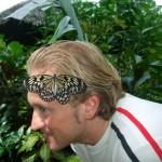 Prony die größte Schlange der Welt (Bohol)