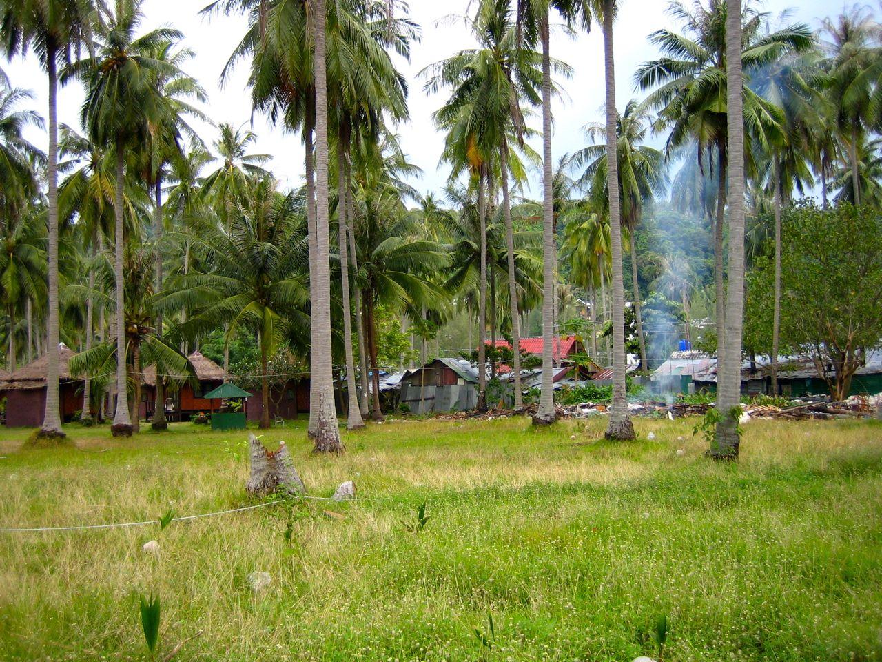 Ko Phi Phi Don – noch 12 Tage bis zur Zerstörung