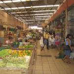 1 Pfund Hund bitte – der Ekelmarkt von Merida