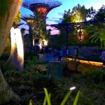 NEW ENTRY in Awesome-City: GARDENS BY THE BAY