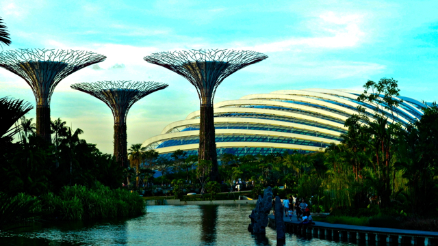 Man made Paradise NEW ENTRY in Awesome City: GARDENS BY THE BAY