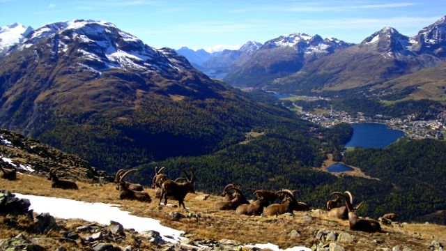 Schweiz, der unterschätze Nachbar