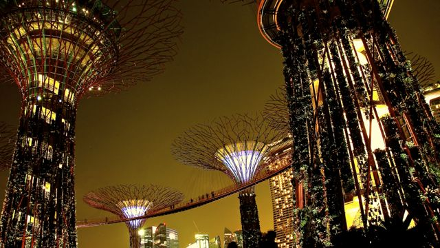 IMG 0128 Supertrees @ Gardens by the Bay