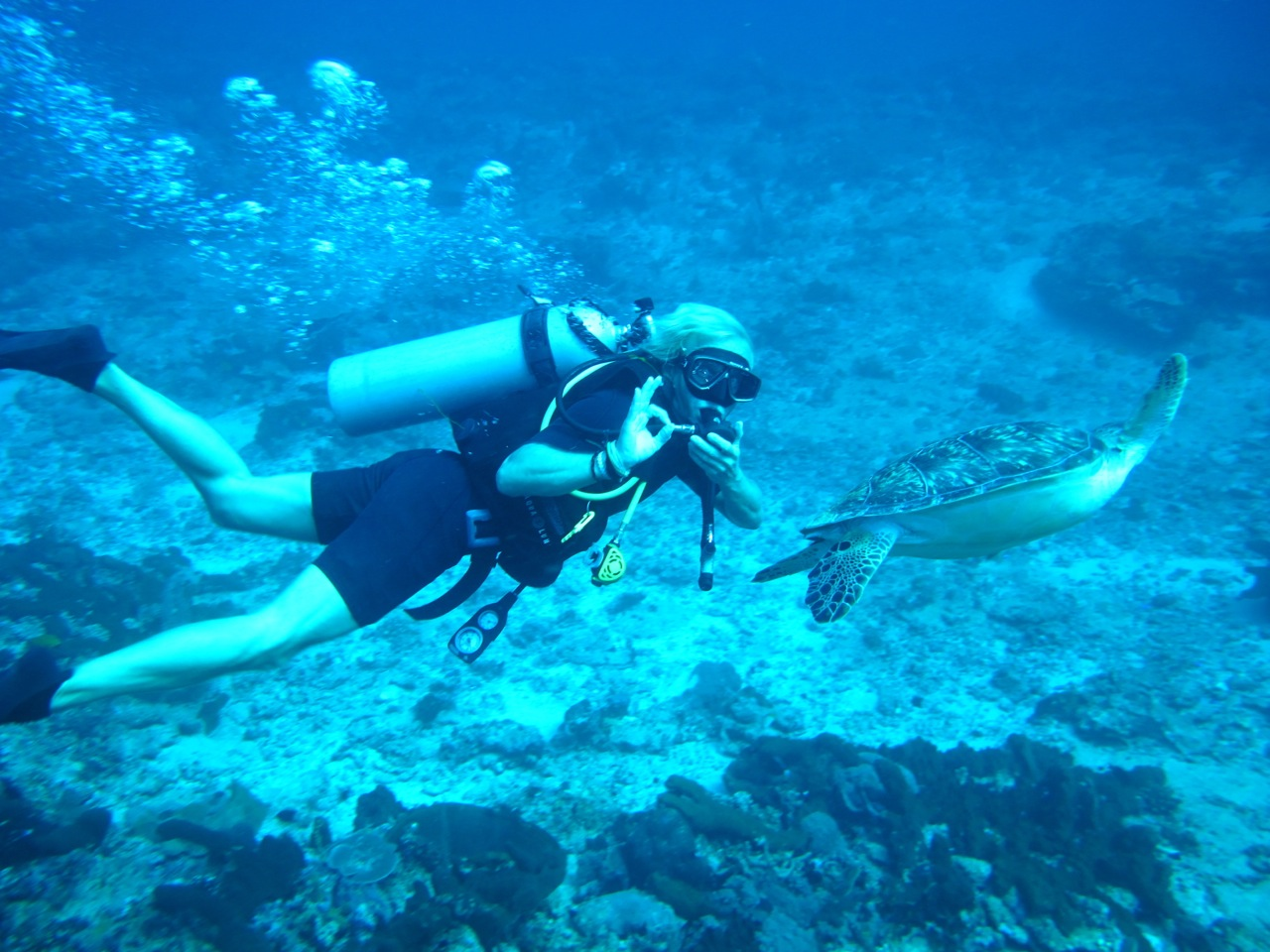 Diving on Gili Islands