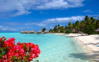 Bora Bora, Tahiti & Co. – Französisch Polynesien planen, aber richtig!