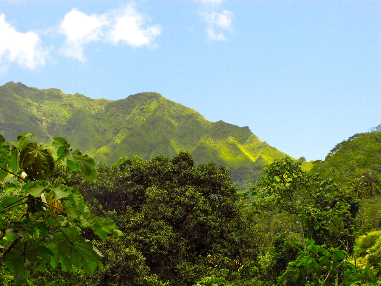 Raiatea Französisch Polynesien