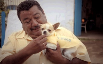 """""""Wifi-Dogs"""" – Als ich dieses sponsored Video zum ersten mal sah, wußte ich nicht, ob ich lachen oder weinen sollte."""