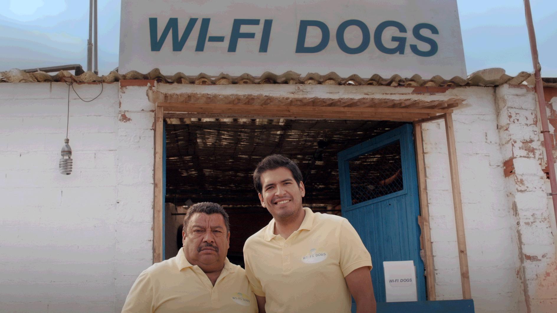 Wifi dogs