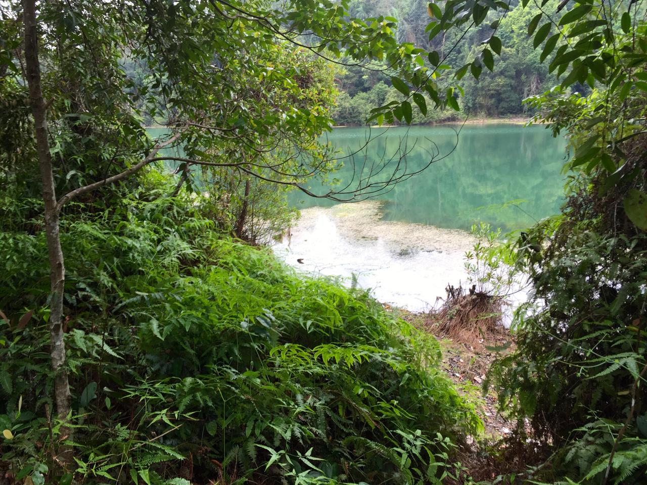Dschungel Trekking zum Neujahr. Der beste Start!