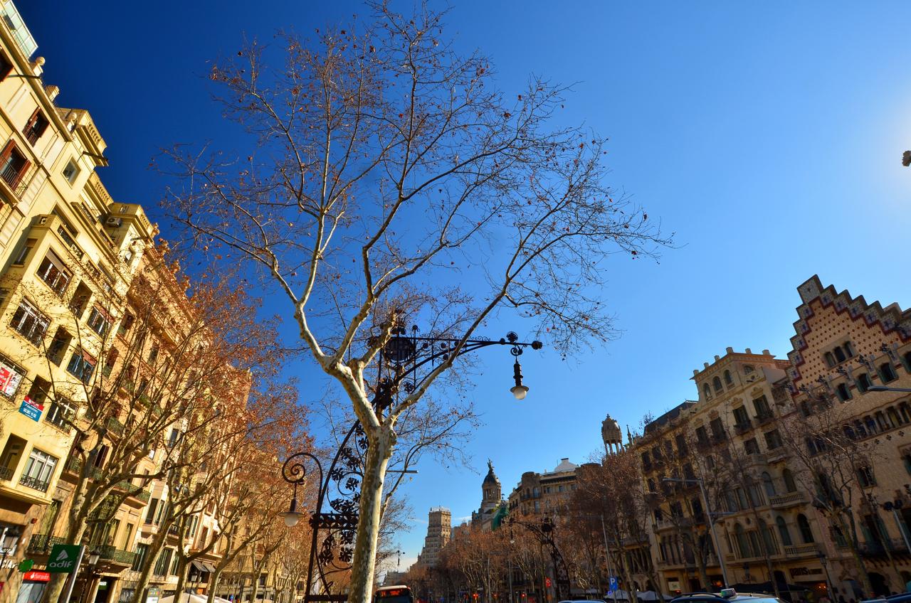 Barcelona - mit über 20 Grad selbst im deutschen Winter ein TOP-Reiseziel.
